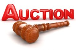 Auction-Peteol Station-Property Included